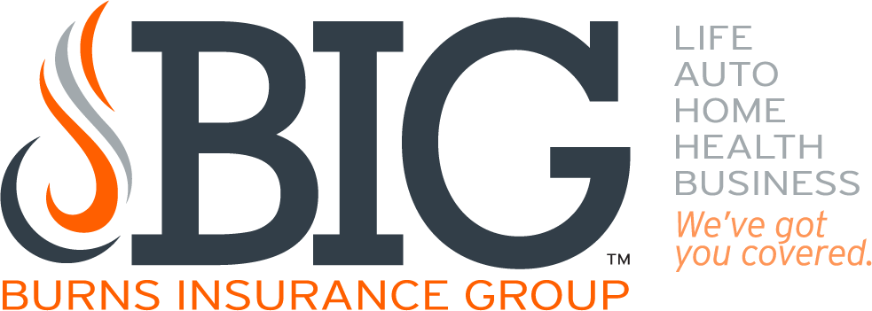 Burns Insurance Group